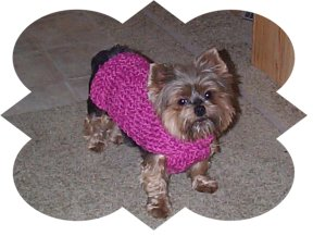 dog sweater granny sq