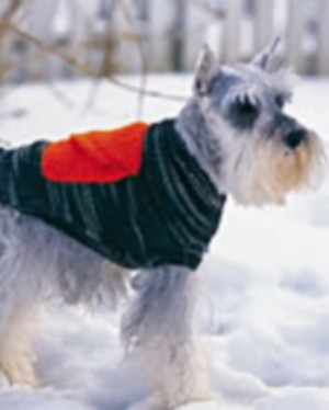 free knitting patterns for dogs
