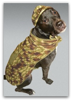 camo dog outfit