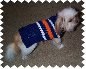 Unique free easy crochet dog sweater pattern for a small dog