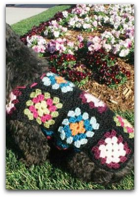 Free Crochet Dog Sweater